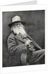 Walt Whitman by American Photographer