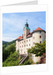 Gewerkenegg castle, Idrija, Slovenia by Anonymous