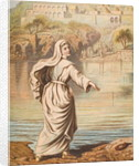 Christiana entering the river by English School