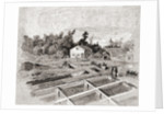 New York State hatcheries at Caledonia, New York, in the 19th century by from 'The Story of Twenty Five Years'