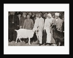Mahatma Gandhi arrives in London, England in 1931 with his disciple, Madeleine Slade, and his two goats by English Photographer