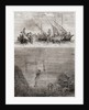 Pearl divers off the coast of the Island of Ceylon in the 18th century by French School