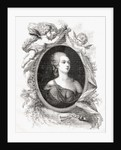 Madame Du Barry by French School