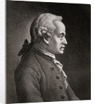 Immanuel Kant by Anonymous