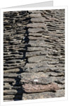Gjirokastra or Gjirokaster: Typical stone roofs in the old town by Anonymous