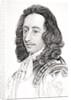 Algernon Sidney by English School