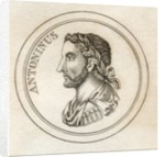Antoninus Pius by English School
