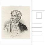 Ferdinand Magellan by English School