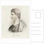 Marcus Claudius Marcellus by English School