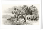 A Native Encampment in Queensland, c.1880 by English School