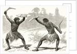 A Waddy Fight by English School