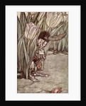 When he heard Peter's voice he popped in alarm behind a tulip by Arthur Rackham