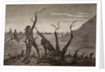 The Tree Men of India in the 19th century by Spanish School