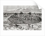 A Congolese village in the mid 19th century by Spanish School