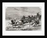 Argentinian gauchos rounding up wild horses by Emile Antoine Bayard