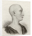 Ambrose Philips by English School