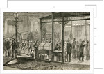 Bourke Street, Melbourne, Australia on a Saturday night in the 19th century by English School
