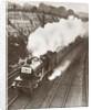 The Cheltenham Flyer aka The Cheltenham Spa Express train in 1931 by Anonymous