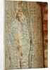6th century Visigothic calendar carved into pillar in Orange Tree patio by Unknown