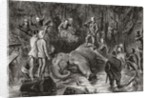 Albert Edward Prince of Wales, during an elephant hunt in Ceylon in 1875 by Anonymous