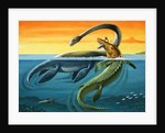 Prehistoric Creatures in the Ocean by English Photographer