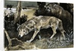 Wolves on the prowl by English School