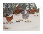 Hens in the Vegetable Patch by Linda Benton