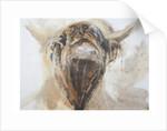 La Vache by Lou Gibbs