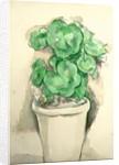 Pot of Geraniums, c.1885 by Paul Cezanne