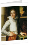 Portrait of a Young Man, mid-sixteenth century by Florentine School
