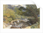 On the Lyn, North Devon by William Henry Millais