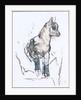 Ibex Kid by Mark Adlington
