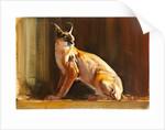 Arabian Caracal by Mark Adlington