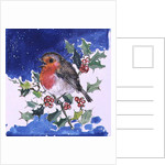 Robin Red-breast, 1996 by Diane Matthes
