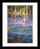 Rhapsody in Blue, 2015 by Martin Decent