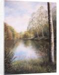 River Dart Devon by Margo Starkey