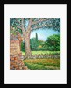 Appia Antica, View by Noel Paine