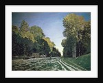 Route de Chailly, Fontainebleau, 1864 by Claude Monet