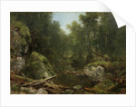 Chapel Pond Brook, Keene Flats, Adirondack Mountains, N.Y., 1870 by Asher Brown Durand