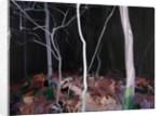 Forêt 13 vendredi-13-novembre ,2015 by Olivier Morel