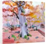 Forêt 37, 2018 by Olivier Morel