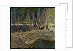 The Beaver Dam, 1919 by James Edward Hervey Macdonald