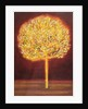 Blossoming Tree, 1997 by Peter Davidson