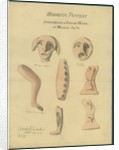 Moabitic pottery from Mr Shapira's 2nd Collection, 1872 by Claude Conder