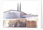 Arizona Workshop by Peter McClure