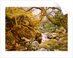Study from Nature: Inveruglas, 1857 by Joseph Noel Paton
