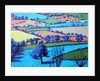 Teme Valley summer II close up by Paul Powis