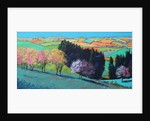 Teme Valley blossom by Paul Powis