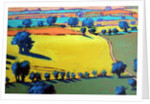 Cotswold Way close up by Paul Powis