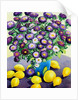 Purple Asters and Lemons by Christopher Ryland